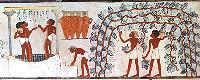 Egyptian wine-making from the tomb of Nakht, c. 1400BC